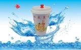 冰爽夏日500ML飲料杯冷飲杯一次性塑料杯
