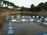 深水網箱廠家,淡水養殖設備,魚塘網箱加工養殖網