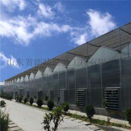 厂家直销阳光板温室大棚 大量批发供应