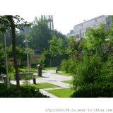 珠江三角地区乔木灌木地被苗木销售工程公司