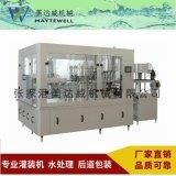 桶裝水直線式、旋轉式灌裝生產線設備