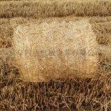 自動捆繩圓捆拾草打捆機,河南行走麥秸捆草機