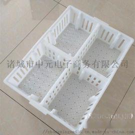 鸡苗筐使用方法塑料鸡苗筐使用好处四格鸡苗运输箱图片