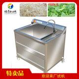 现机供应单缸小型洗菜机 气泡臭氧果蔬清洗机 洗果机