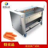 腾昇机械现货供应土豆削皮机 红薯去皮机 生姜清洗机