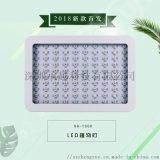 承越1000WLED植物生长灯光合作用日照补光灯