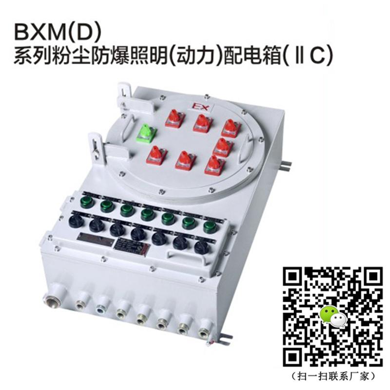 定製鋼板防爆照明配電箱BXM(D)