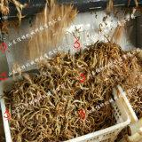 批量生产鱼排需要多少设备,安徽自动化鱼排油炸机