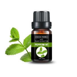 GMP 香精香料油 药典标准 薄荷油 薄荷素油