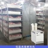 肉类缓化库解冻机 低温高湿解冻机