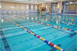 恒温游泳池设备公司_哪里 循环水设备