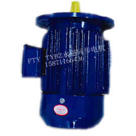 三相永磁同步電機TYBZ YT FTY 同步電機
