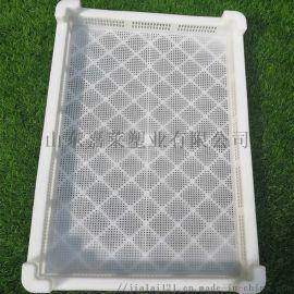 塑料冷冻盘海鲜盘长方形