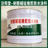 耐酸碱硅橡胶防水涂料、现货、销售