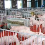 猪舍除湿机 防止猪圈湿度过高