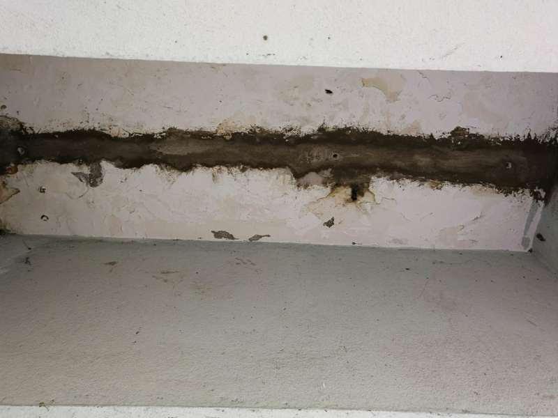 朝陽市焦化廠水池伸縮縫漏水怎麼修補