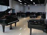 河南鄭州那裏有鋼琴買-初學買鋼琴還是電鋼琴