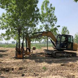 挖掘机改装挖树机 常青移树机 带土球起树机