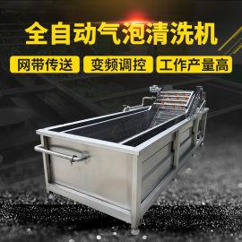 苦菊气泡清洗机 商用洗菜机 高压喷淋式清洗机