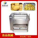 芋头清洗机,商用土豆去皮机,毛刷清洗机厂家