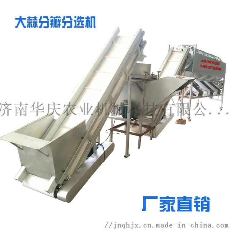 庆华牌QH500-3大蒜分瓣分级机