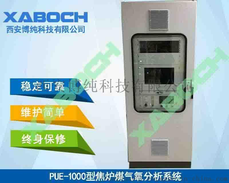 煤气联产气烧石灰窑烟气热值CO分析仪