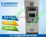 煤氣聯產氣燒石灰窯煙氣熱值CO分析儀