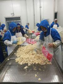 鸡米花产品自动裹粉机 鱼米花滚筒上浆设备