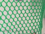 广西南宁塑料养殖网厂 塑料平网厂家 平面滤水网