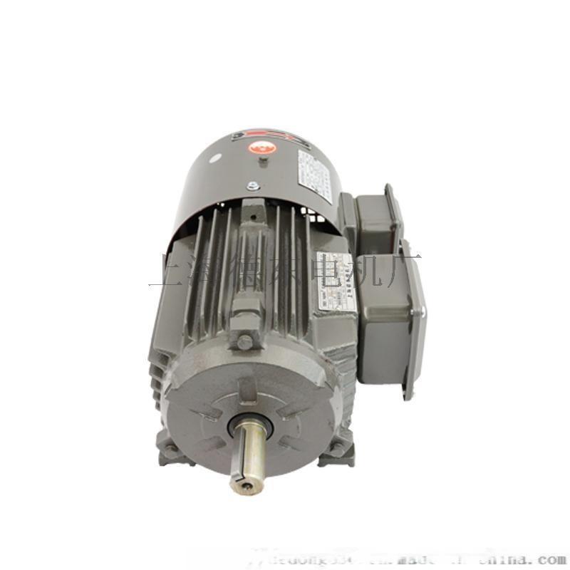 原厂德东电机YVF2802-6   0.55KW