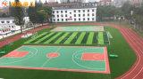衡阳学校塑胶跑道施工 全塑型跑道材料厂家