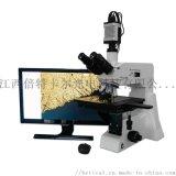 CR50A型正置三目金相显微镜 800倍放大