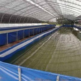 帆布鱼池高密度养殖带镀锌板支架定制尺寸