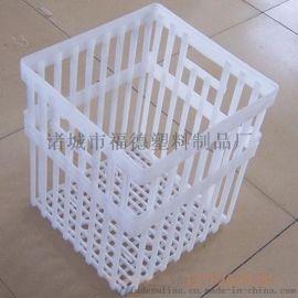 塑料鸭蛋筐  白色塑料筐  鸡蛋周转筐厂家