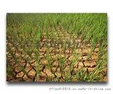 土壤墒情監測系統