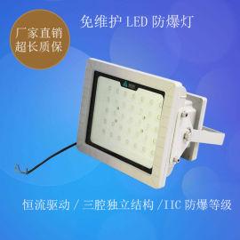 LED防爆照明灯50W