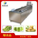 洗菜机 果蔬清洗机 蔬菜清洗流水线