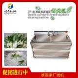 单双缸洗菜机 多槽果蔬清洗机 可定制