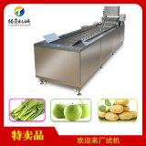 水果蔬菜氣泡清洗機 商用廚房洗菜機
