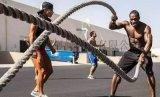 供应涤纶材质体能训练绳