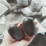 源头厂家直供园艺白石子 枯山水鹅卵石 铺路装饰山水雨花石
