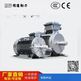 YE4  效标准(IE4)电动机 Virya品牌