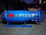 遊樂場水上項目用的什麼泵?中藍潛水泵 潛水軸流泵