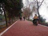 生态混凝土 彩色透水路面