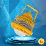 東道私模產品 LED防爆燈80w90w100w