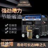 大泽动力12KW柴油发电机TO16000ET