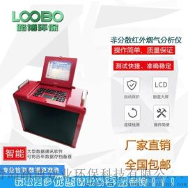 LB-3010非分散红外传感烟气分析仪