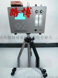 双路空气采样器(转子流量计)LB-6E