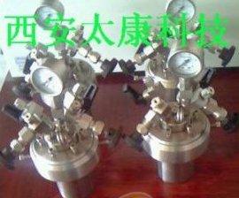 WCGF-100ml微型高压反应釜