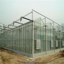 建设阳光板温室大棚 生产阳光板温室 青州鸿川阳光板温室